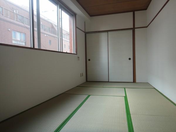 Satsukan.BLD 5028