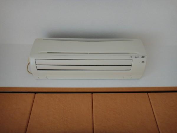 アミューパレス V 50119