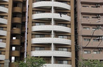 アミューパレスG502 の賃貸マンション