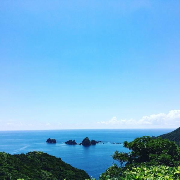 鹿児島市賃貸会社ゼロハウスの新人「ヤマシタ」です! 「タナカ」は、老人ホームの紹介専門部門「シニア住まいラボ鹿児島」へ栄転いたしました!
